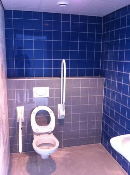 Toilet blauw grijs en wit tegelwerk nico looijmans tegelwerkennico looijmans tegelwerken - Deco toilet grijs en wit ...