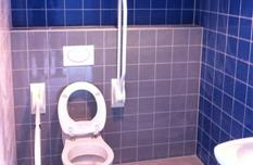Toilet blauw, grijs en wit tegelwerk
