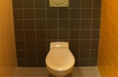 Toilet geel en grijs tegelwerk